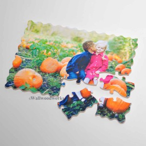 Kids Wood Puzzle - Wall Woodworks Company