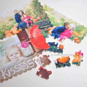 Childrens Wood Puzzles - Wall Woodworks Company